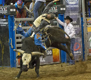 Rodeo bull rider cowboys. Rodeo bull rider competes the bull ride in national rodeo competition in Scottsdale, Arizona, rodeo Stock Photo