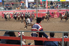 Rodeo in chile Royalty Free Stock Image