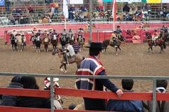 Rodeo in Chile Lizenzfreies Stockbild