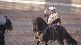 Rodeo in Chili stock videobeelden