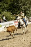 Rodeo competition Stock Images