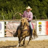 Rodeo competition in ranch roping Royalty Free Stock Photo
