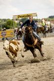 Rodeo competition in ranch roping Royalty Free Stock Photos