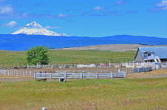Rodeo corall in front of mt hood Stock Photos