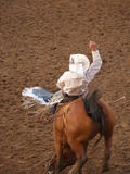 Rodeo Cowboy. A cowboy rides a broncing horse at a western rodeo Stock Images