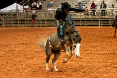 Rodeo Cowboy. Cowboy riding a horse during a rodeo competition at night Stock Photo