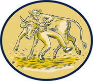 Rodeo Cowboy Steer Wrestling Bull Oval Etching Royalty Free Stock Photography