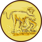 Rodeo Cowboy Steer Wrestling Circle Etching Royalty Free Stock Images