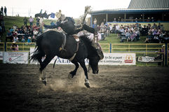 Rodeo and cowboys. Canadian pro rodeo in Airdrie Alberta Canada Royalty Free Stock Image