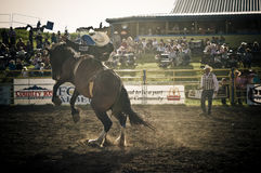 Rodeo and cowboys. Canadian pro rodeo in Airdrie Alberta Canada Stock Image