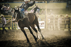 Rodeo and cowboys Royalty Free Stock Images