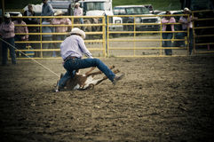 Rodeo and cowboys Royalty Free Stock Photography
