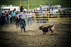 Rodeo and cowboys. Canadian pro rodeo in Airdrie Alberta Canada Royalty Free Stock Photos