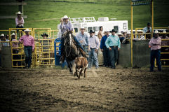 Rodeo and cowboys. Canadian pro rodeo in Airdrie Alberta Canada. Western rodeo in 2011 royalty free stock images