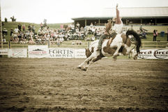 Rodeo and cowboys Royalty Free Stock Photos