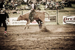 Rodeo and cowboys Stock Images