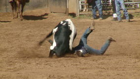 Rodeo Cowboys - Bulldogging Steer Wrestling in Slow Motion - Clip 4 of 9. Slow motion of a cowboy steer wrestling and bulldogging. Shot at 60 FPS with a Sony EX3