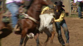 Rodeo Cowboys - Bulldogging Steer Wrestling in Slow Motion - Clip 7 of 9. Slow motion of a cowboy steer wrestling and bulldogging. Shot at 60 FPS with a Sony EX3
