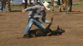 Rodeo Cowboys - Calf Roping in Slow Motion - Clip  3 of 7. Slow motion of a cowboy calf roping.  Shot at 60 FPS with a Sony EX3