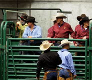 Rodeo Cowboys Stock Image