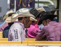 Rodeo Cowboys. Cowboys at the rodeo getting ready for events while sitting in the chutes. Rodeo In Red Bluff, California. April 19, 2015 royalty free stock image