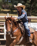 Rodeo Cowgirl. A barrel racer riders her horse full speed to finish line after clearing her last barrel.The rodeo in Cottonwood, California is a popular event on Royalty Free Stock Photos