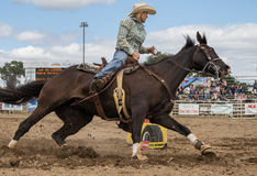 Rodeo Cowgirl Barrel Racer Stock Photo