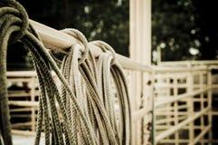 Rodeo de la cuerda del lazo Foto de archivo