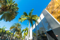 Rodeo Drive on a clear day Stock Photos