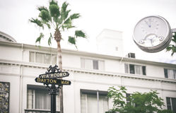 Rodeo drive sign, with palm tree in the background. Royalty Free Stock Photos