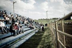 Rodeo e cowboy Immagini Stock