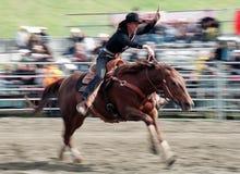 Rodeo: El competir con del barril de las señoras Fotografía de archivo