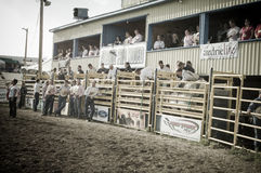 Rodeo en cowboys Royalty-vrije Stock Foto