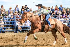 2018 FAWE Rodeo. Rodeo event at the 3rd Annual FAWE Expo in Hernando County, Florida showcased bull riders, ladies barrel racing and calf roping Royalty Free Stock Image