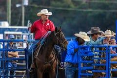 Rodeo för 2018 FAWE Arkivbild