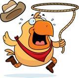 Rodeo-Huhn Lizenzfreie Stockbilder