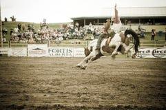 Rodeo i kowboje Zdjęcia Royalty Free