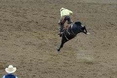 Free Rodeo In Wyoming Royalty Free Stock Image - 138974126