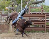 Rodeo-Kicker Stockfotografie