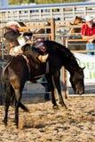 Rodeo Royalty Free Stock Photos