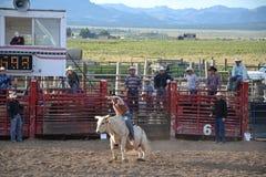 Rodeo in kleine viliage royalty-vrije stock afbeeldingen