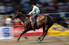 Rodeo: Ladies Barrel Racing Royalty Free Stock Photography