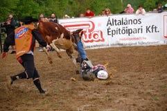 Rodeo przedstawienie Obraz Stock