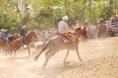 Rodeo przedstawienie Zdjęcie Stock