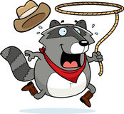 Rodeo Raccoon Royalty Free Stock Photos