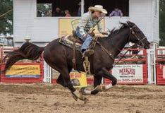 Rodeo Racer Stock Photo