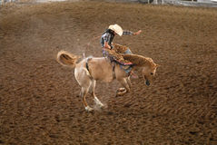 Rodeo Rider in Texas Stock Photography