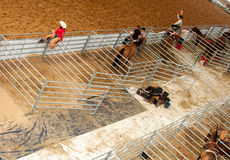 Rodeo riders in paddocks Stock Photography