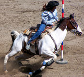 Rodeo Series. A woman competing in a rodeo Royalty Free Stock Photography