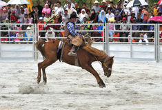 Rodeo Show Stock Photos